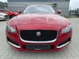 Jaguar  XF E-Performance Prestige E-PERFORMANCE #19